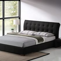 Boston Black